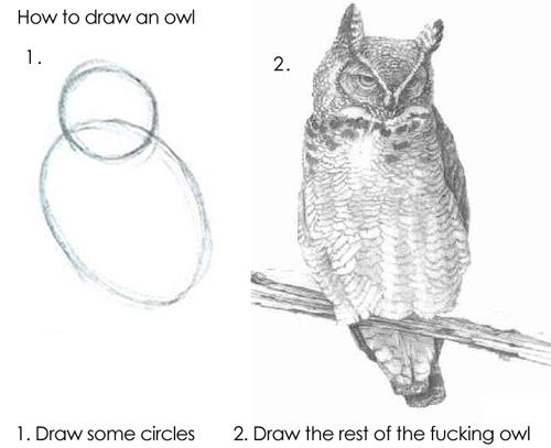 Figure 1: How to Draw an Owl